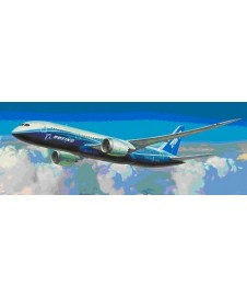 BOING 787 -8 DREAMLINER CIVIL AIRLINER