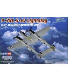 P-38L 5-LO LIGHTING