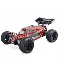 Coche Monster Buggy 1/10 4wd