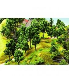 5 Arboles Primavera 10-14 Cm