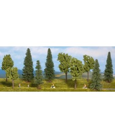 10 Arboles Bosque Mixto 10-14cm